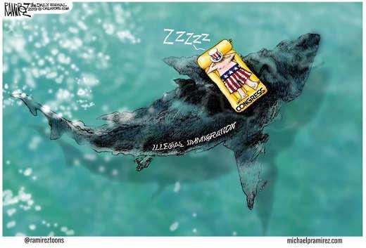 congress sleeping on raft shark of immigration