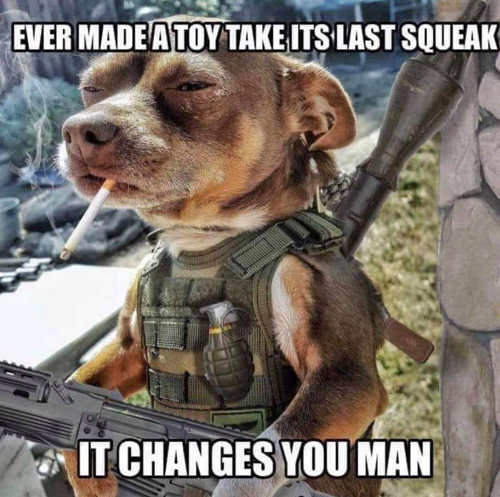 ever made a toy take its last squeak it changes you man dog