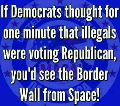 if democrats thought immigrants voted republican could see wall from space