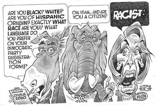 census are you black whte ok citizen racist