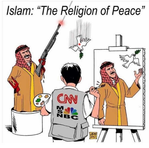 cnn msnbc islam religion of peace dove machine gun