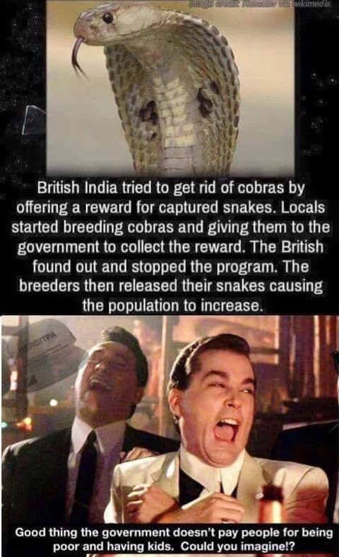 india government pay for cobras people breed what if did same for having kids