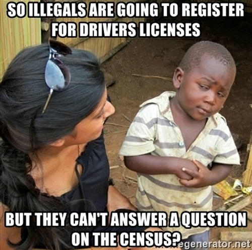 so illegals can get drivers license but cant answer a question on census