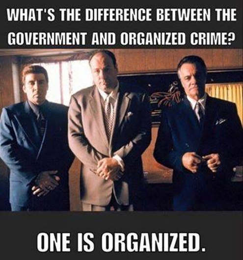 whats the difference government organized crime one is organized