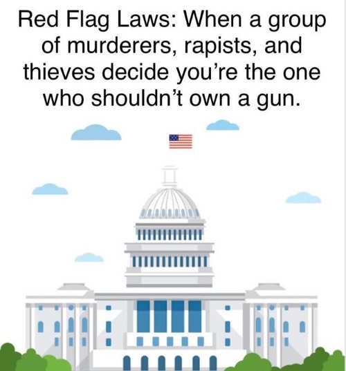 red flag laws when group of murderers thieves congress decide who shouldnt own a gun