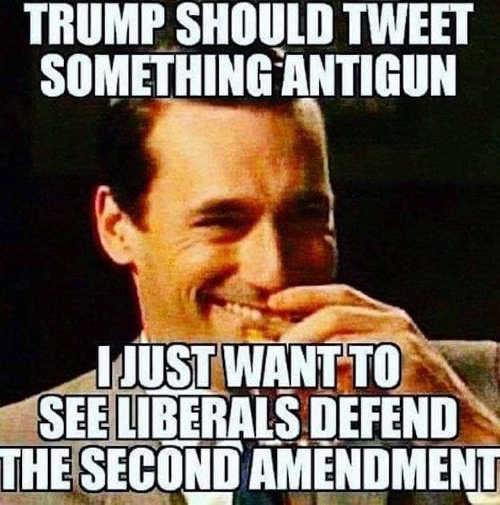 trump should tweet something antigun so liberals defend second amendment