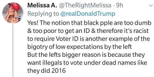 tweet melissa a notion black people too dumb to get id racist bigotry low expectations