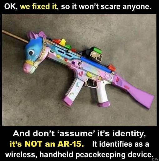 ar 15 fixed it wont scare anyone identifies as wireless peacekeeping device