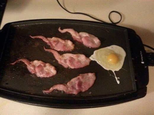 eggs bacon sperm