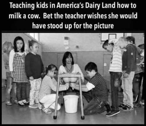 teaching kids americas dairy land milk a cow teacher hooters