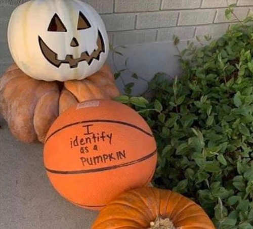 basketball i identify as a pumpkin