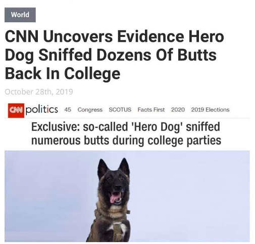 cnn uncovers evidence hero dog sniffed several butts in college