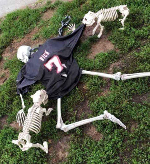 dog skeletons ripping apart vick jersey