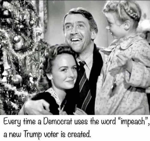 every time democrat uses word impeach new trump voter is created