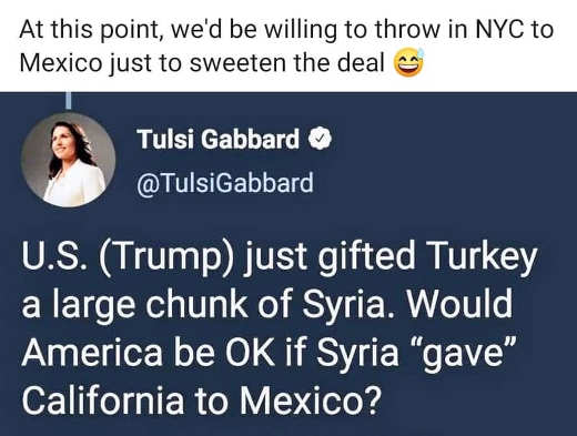 tulsi gabbard ok give california to syria would also throw in new york