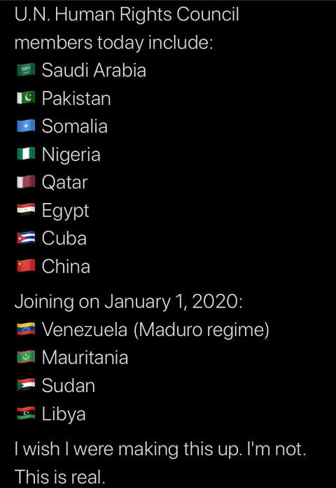 un human rights council saudi arabia somalia china cuba venezuela sudan not a joke