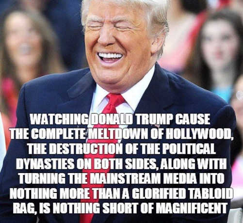 watching trump cause meltdown in hollywood destruction political dynasties media into tabloid
