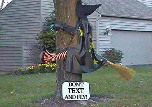 witch dont text and fly crash tree
