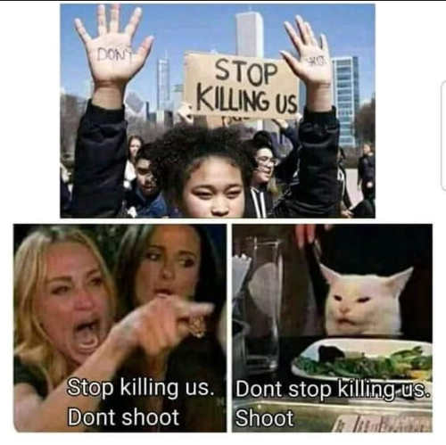 cameron diaz angry lady cat stop killing us dont shoot dont stop killing us