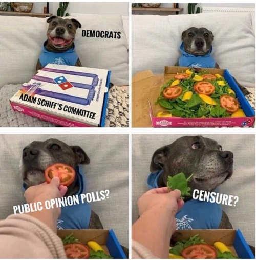 democrats dog pizza adam schiff committee public opinion polls censure