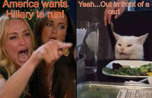 diaz angry lady cat america wants hillary to run in front of bus