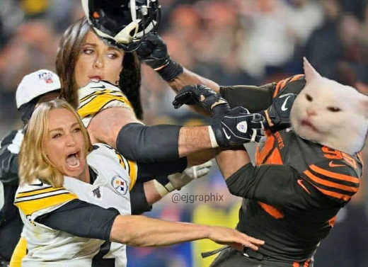 diaz angry lady cat football helmet fight