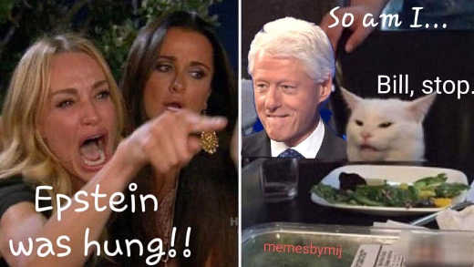 epstein was hung so am i bill clinton cat angry lady