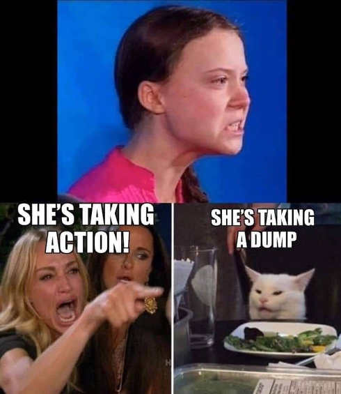 greta thurnberg shes taking action shes taking a dump cameron diaz cat