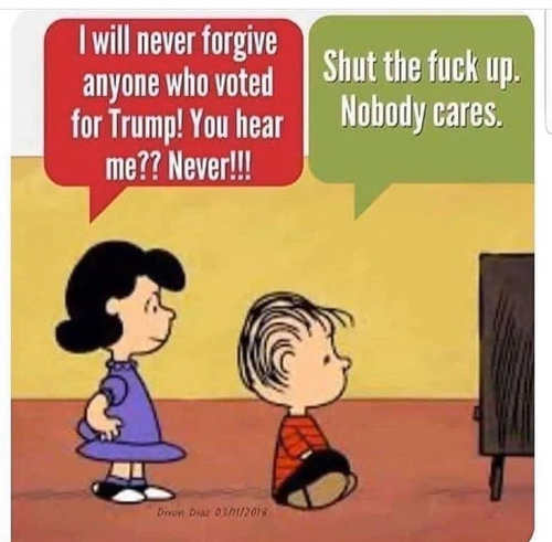 lucy never forgive anyone voted for trump shut up nobody cares tds