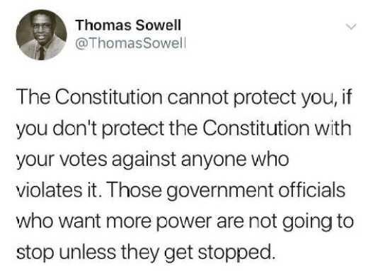 tweet thomas sowell constitution cannot protect you if you vote for people that violate it