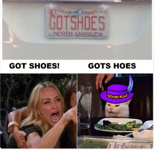 angry lady diaz cat got shoes gots hoes