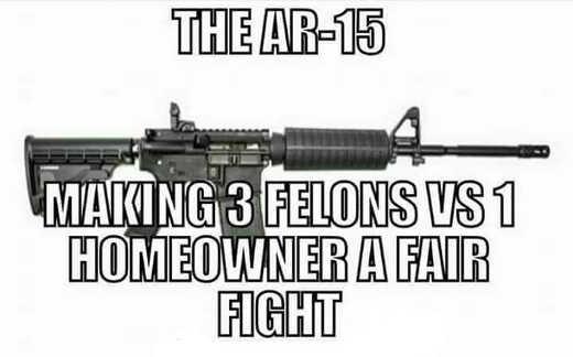 ar-15 making 3 felons vs 1 homeowner a fair fight