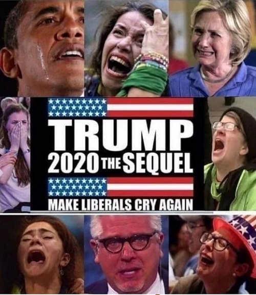trump 2020 the sequel make liberals cry again
