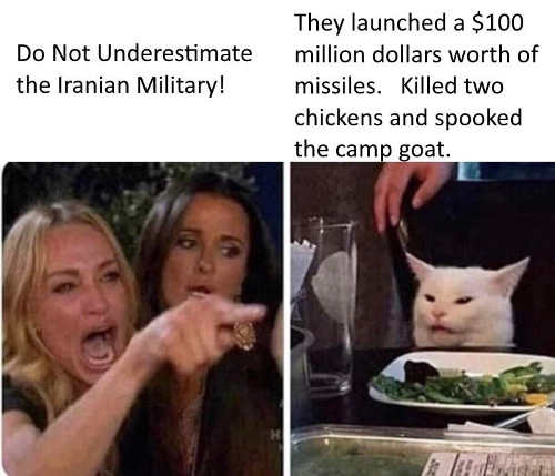 angry lady cat dont underestimate iranian military killed 2 chickens camp goat