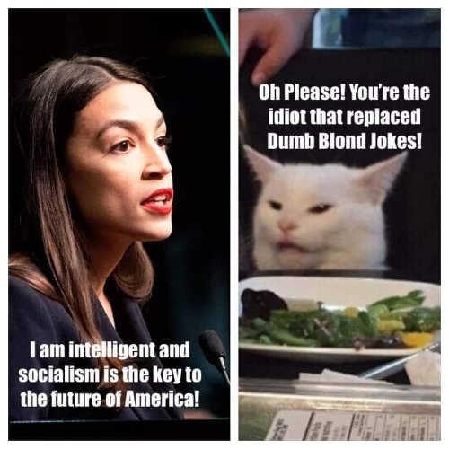 aoc angry lady cat intelligent socialism you replaced dumb blond jokes ocasio cortez