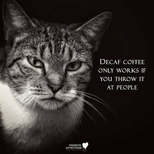 quote decaf coffee only works if you throw it at people