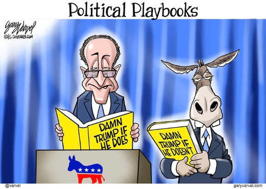 schumer political playbook damn trump if he does or he doesnt