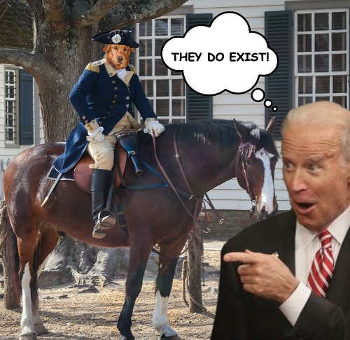 joe biden dog faced pony they do exist