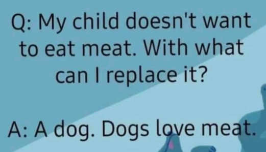 my child doesnt want to eat meat what can i replace it with a dog dogs love meat