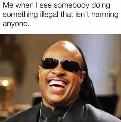 stevie wonder me when see somebody going illegal isnt harming anyone