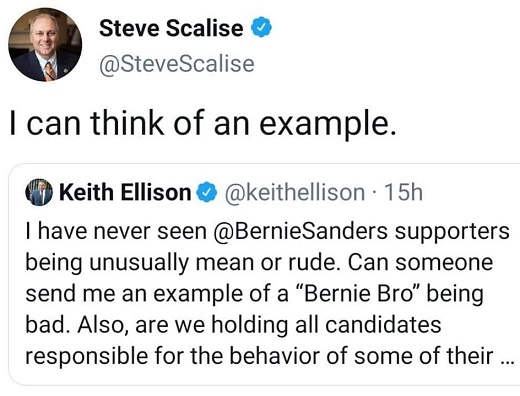 tweet steven scalise i can think of bernie bro example of violence