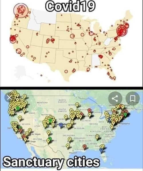 covid 19 coronavirus compared to sanctuary cities map
