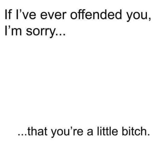 if ever ive offended you im sorry that youre a little bitch