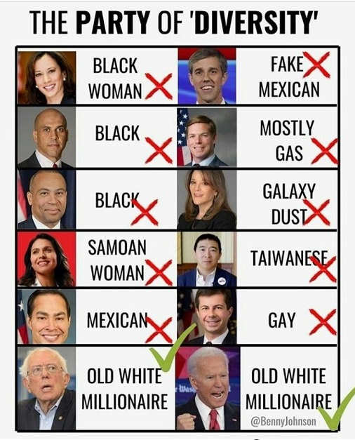 party of diversity x out booker yang buttigieg castro check old white millionaire bernie sanders joe biden