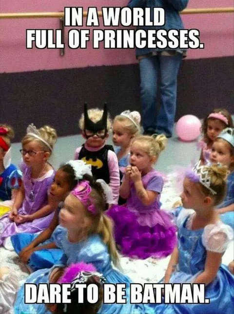 quote in a world of princesses dare to be batman