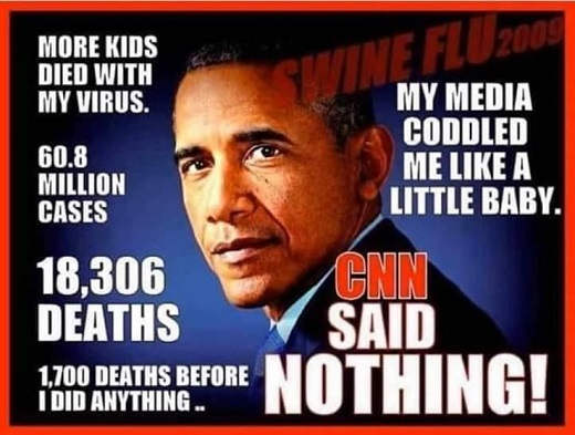 reminder media coddled obama swine fule 60 million cases 18306 deaths