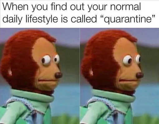 when you find out normal daily lifestyle called quarantine