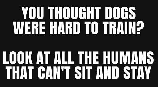 you thought dogs hard to train look at humans cant sit and stay