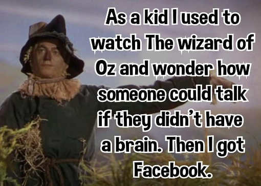as a kid never understood scarecrow speak without brain then got facebook
