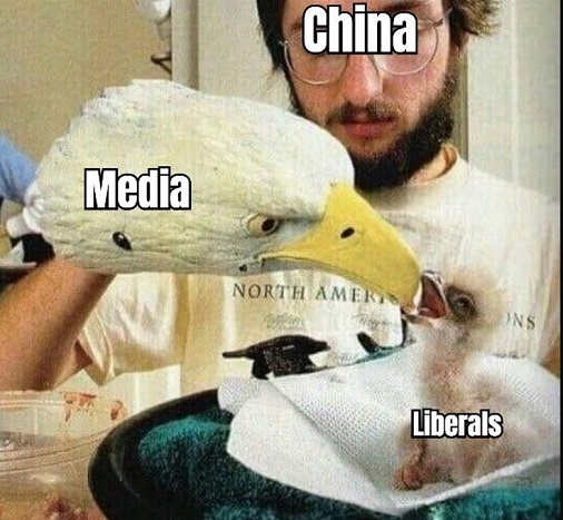 china media puppet feeding liberals propaganda